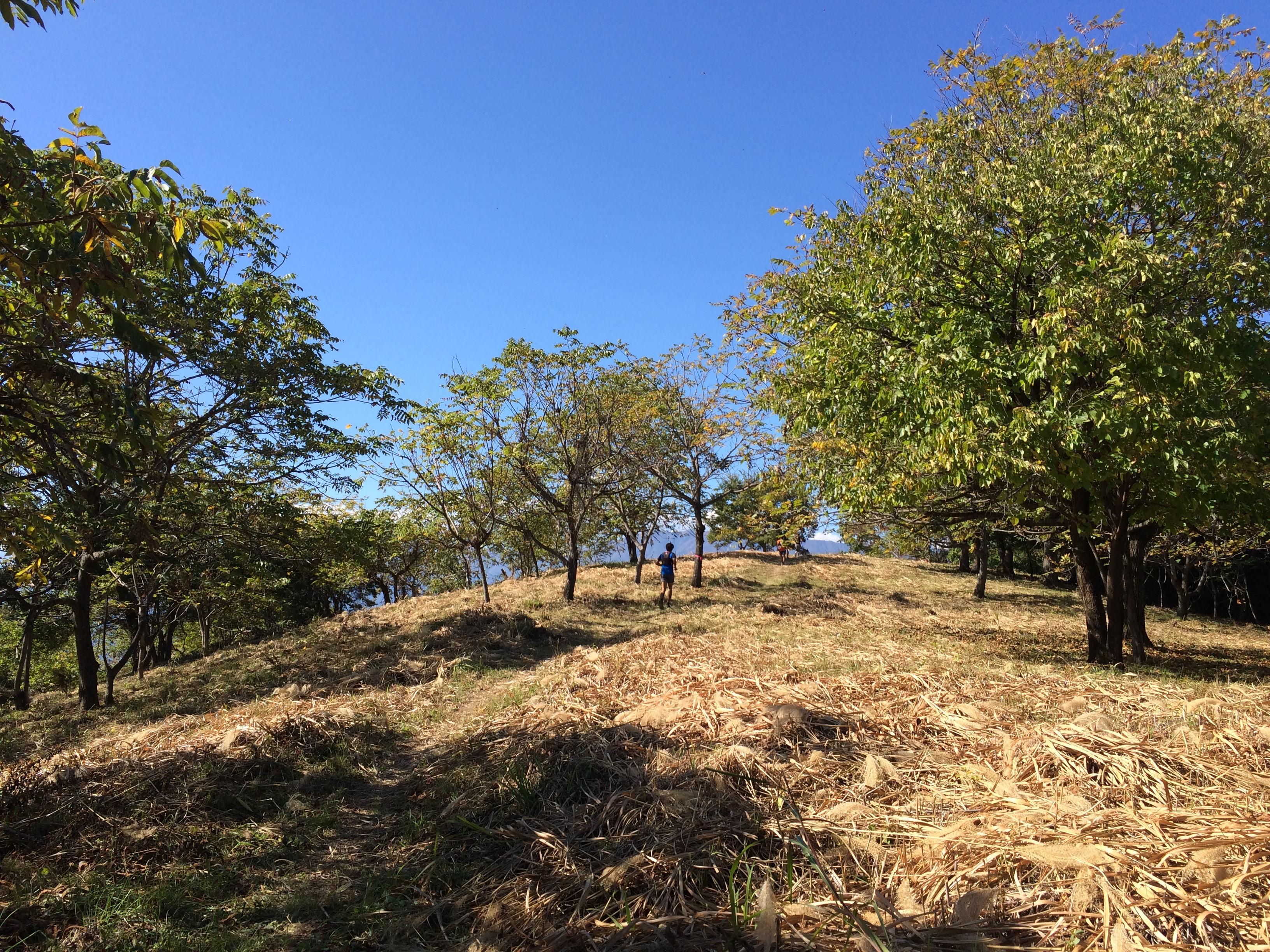 Shibireko 34km Trail Race 2015 – Yamanashi Prefecture