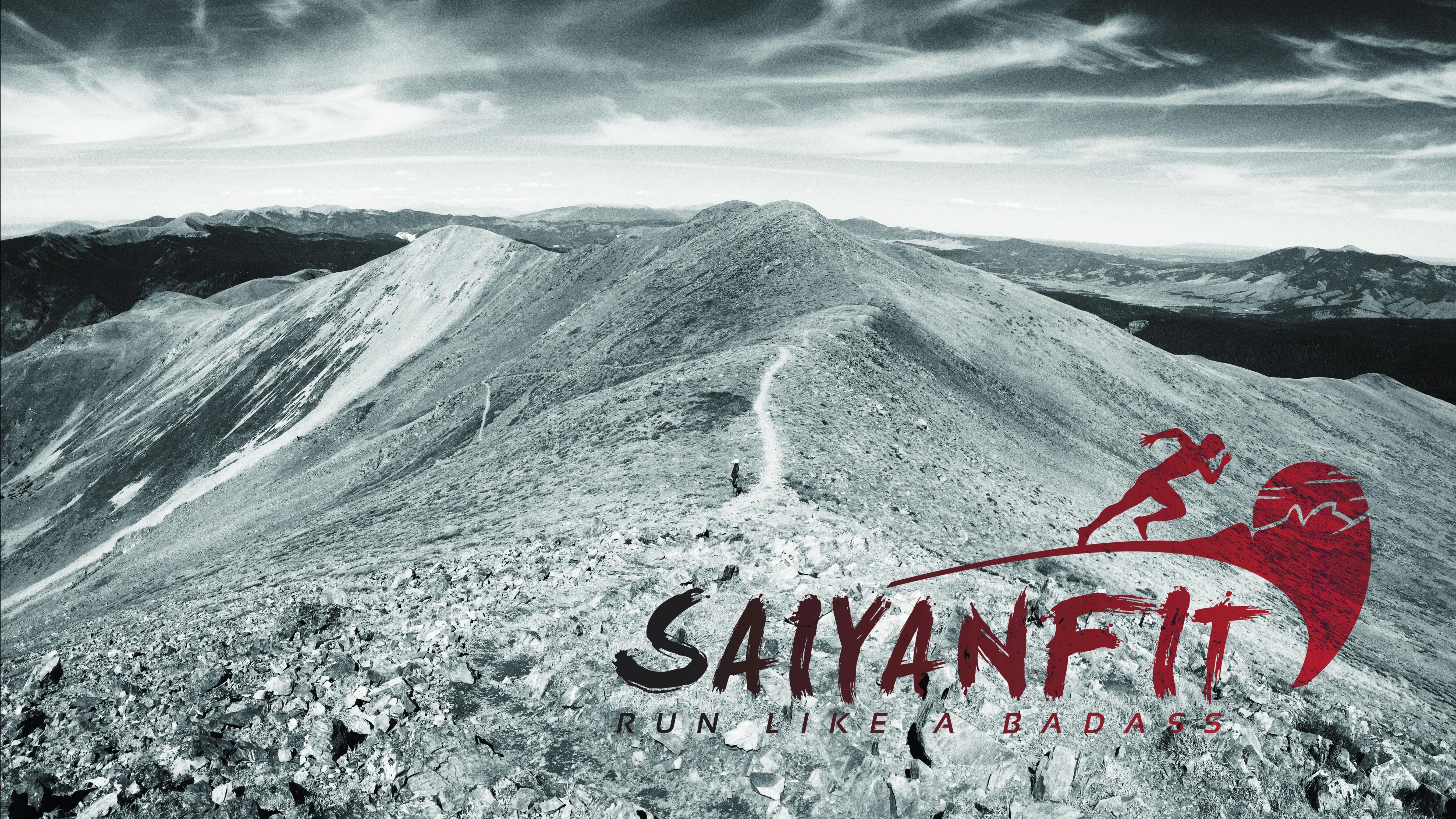 SaiyanFit Blog